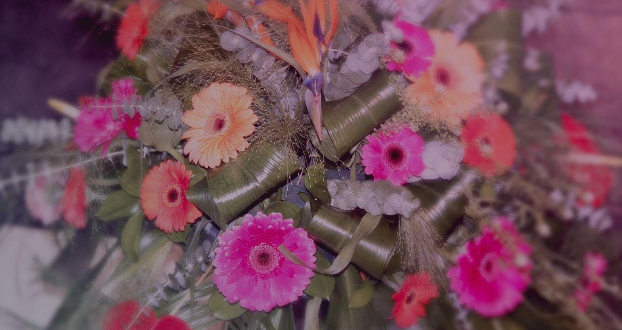 img_fleurs