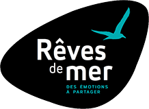 revedemer-logo