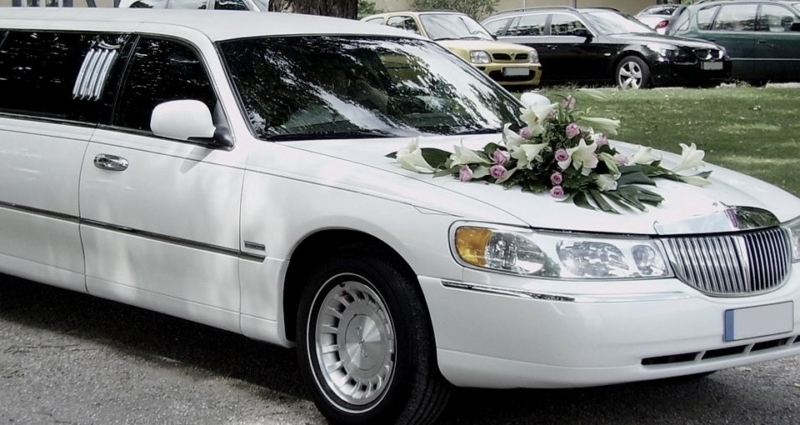 1485101514_vehicles_800x425_acf_cropped